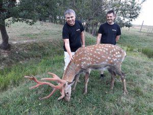На оленячій фермі у Липчі